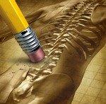 erase lower left back pain