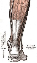 achilles tendon treatment 4