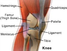 Knee joint pain relief knee joint pain relief can be quite simple in most cases and you can usually do it yourself solutioingenieria Choice Image